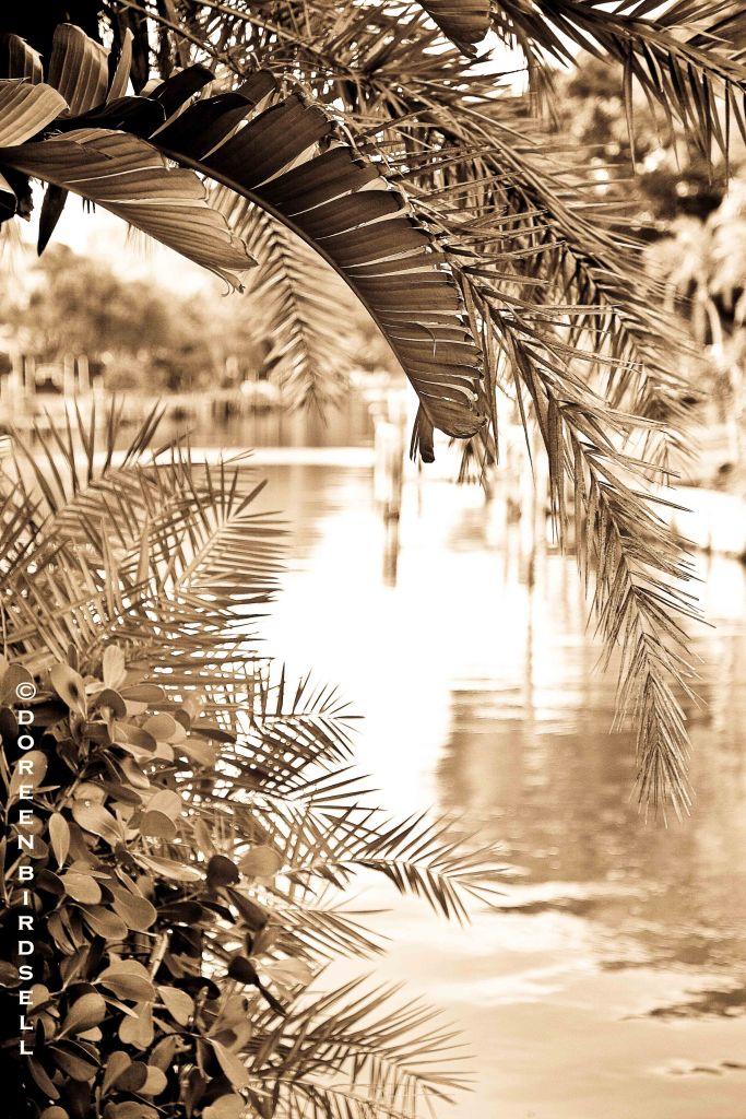 Peace Like a RiverBLOG