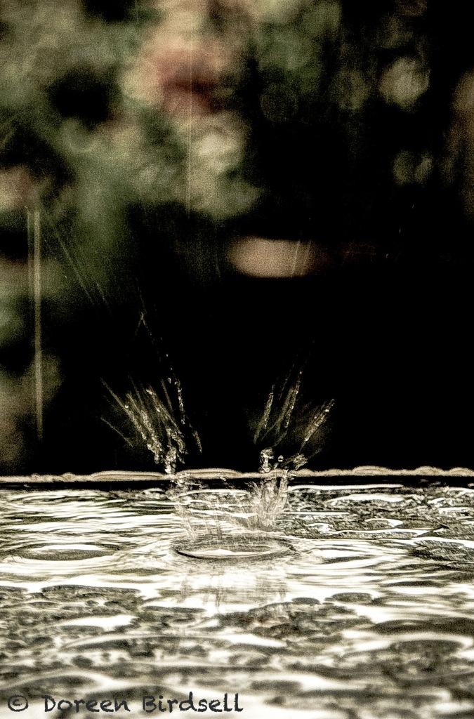 The Heavens Rain